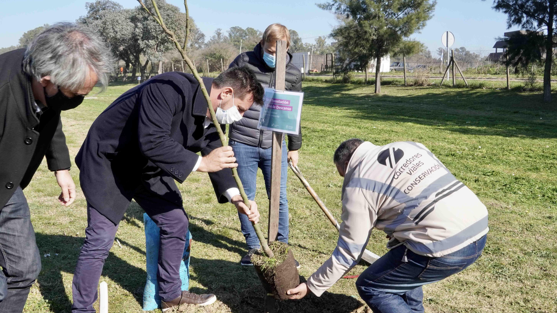 Atanasof y Granados plantando los primeros 10 ejemplares de plantas nativas.